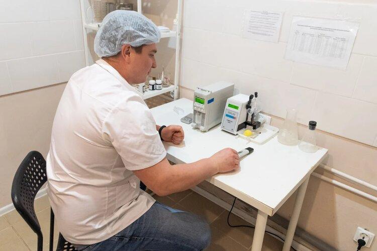 Сырный завод в Камском Устье: как производят татарский камамбер и бри